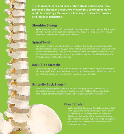 back-health-exercises-poster